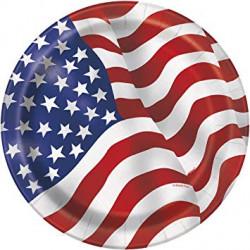 Assiettes USA 23cm (x8)