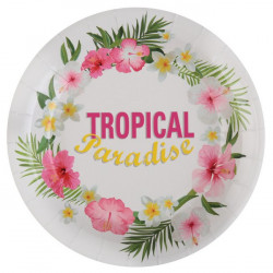 Assiettes tropical multi 23 cm (x10)