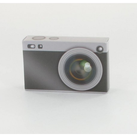 Ballotins appareil photo (x10)