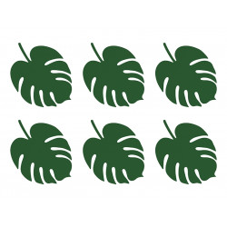Feuilles monstera (x6)